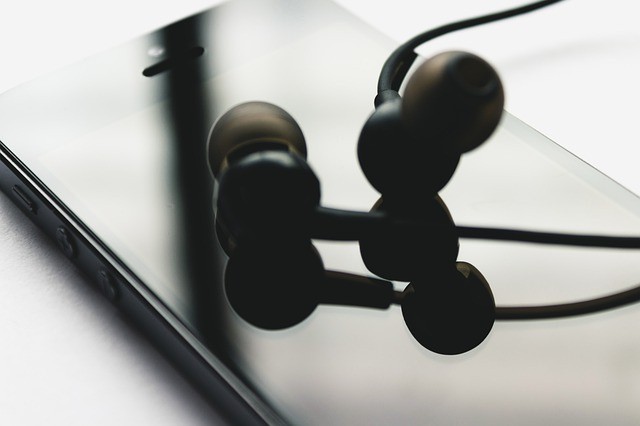 Jaybird Bluebuds X Best Price